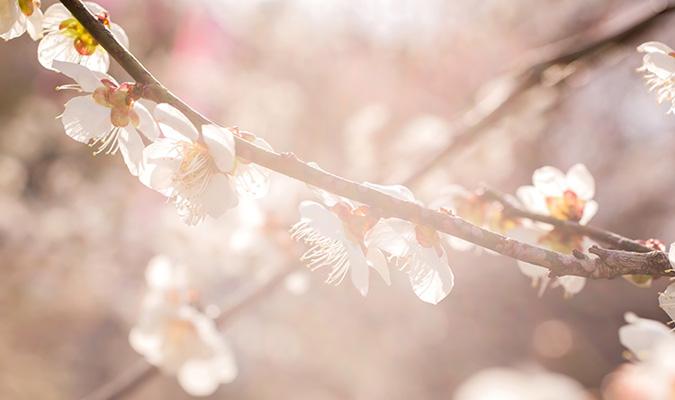 季節の変わり目の健康管理